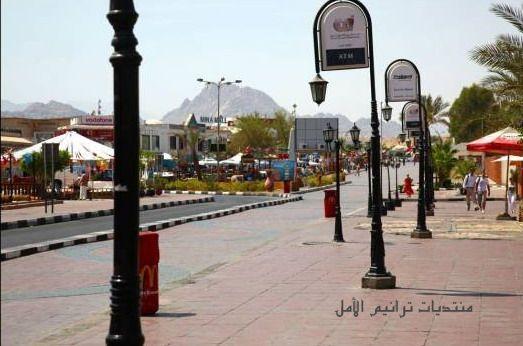 صور من شرم الشيخ sharm el sheikh 2013 130406105430eamg
