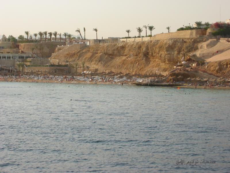 صور من شرم الشيخ sharm el sheikh 2013 130406105431Qnzo