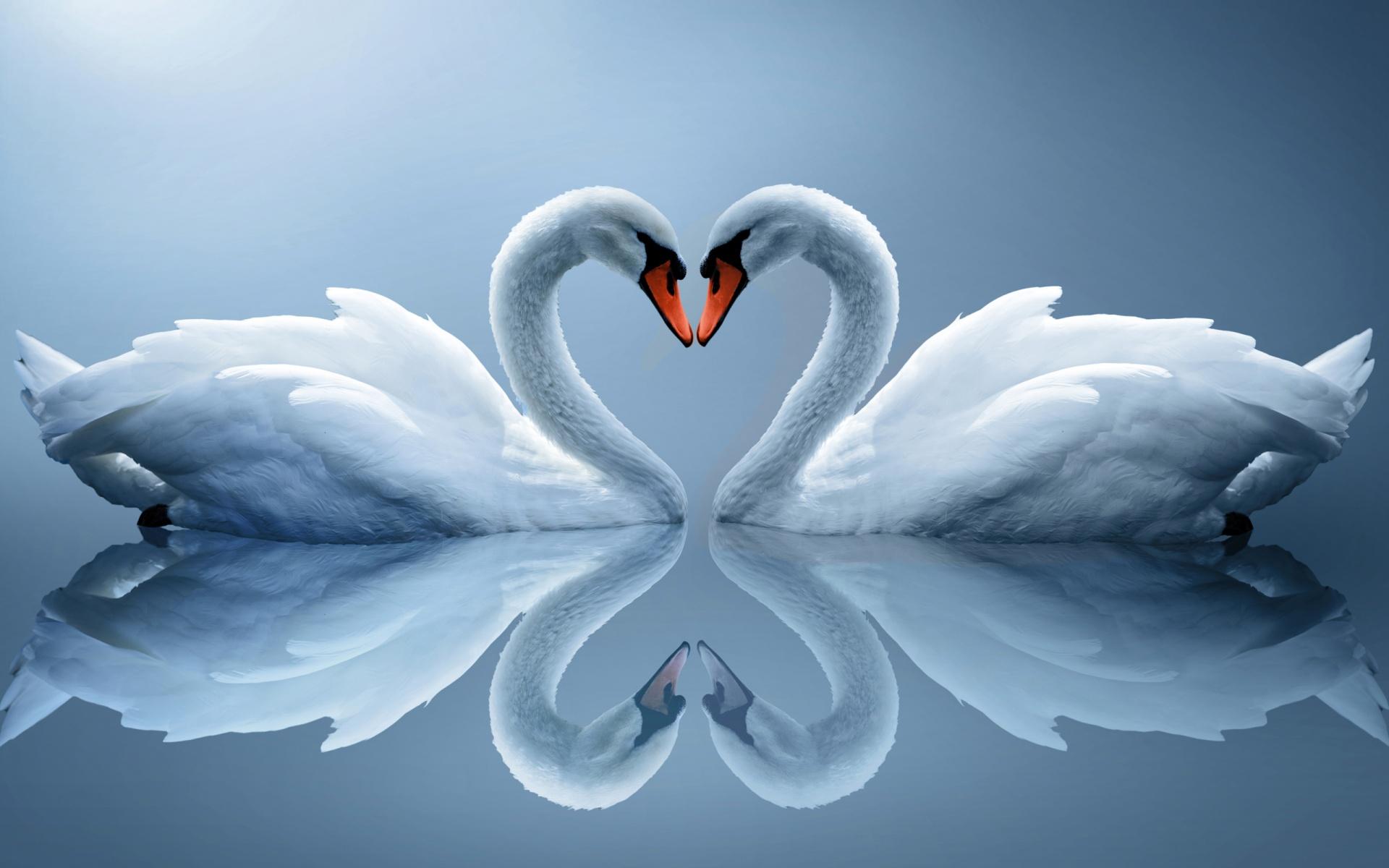Srce srcu 130628193406rAPI