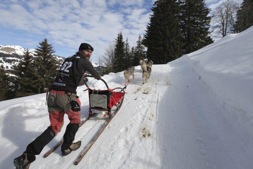 Championnats d'Europe de chiens de traîneaux du 23 au 26 février 2012 à Gryon (Suisse). 689558_pic_970x641
