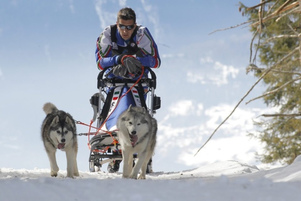 Championnats d'Europe de chiens de traîneaux du 23 au 26 février 2012 à Gryon (Suisse). 689564_pic_970x641