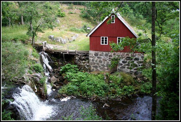 Švedska - Page 2 Natur-brosarp-sverige-1024906