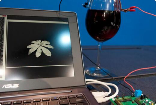 Intel wine