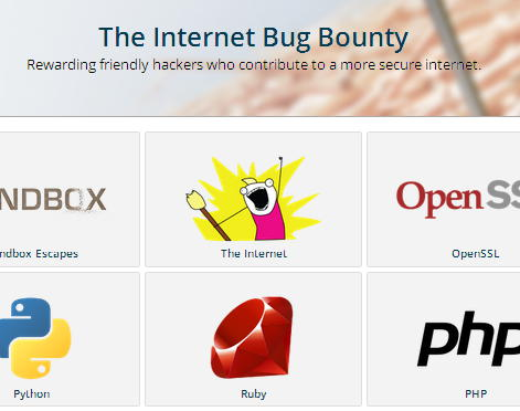 Internet Bug Bounty