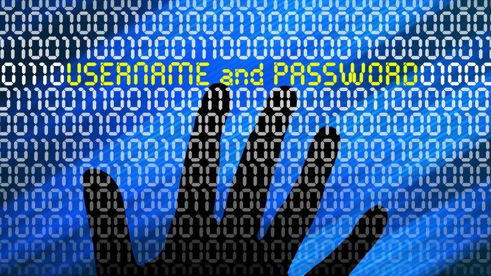 bases de dados na dark web