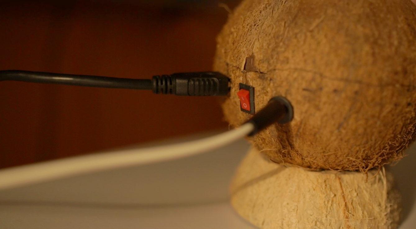 ligações do coco