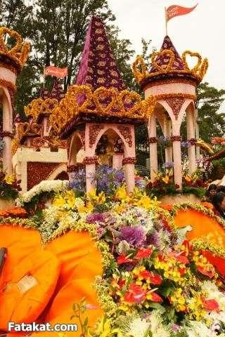 مهرجان الزهور روووعة 13220461879744
