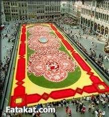 مهرجان الزهور روووعة 13220469397610