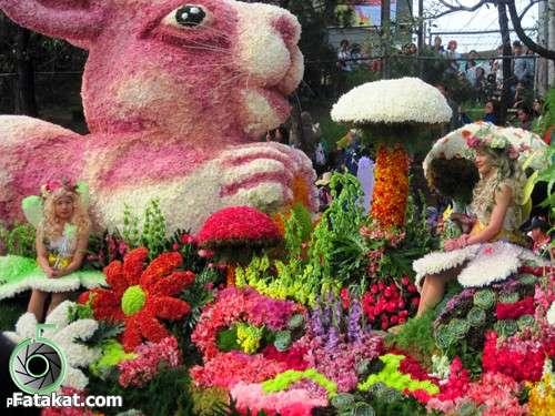 مهرجان الزهور روووعة 13220469978196