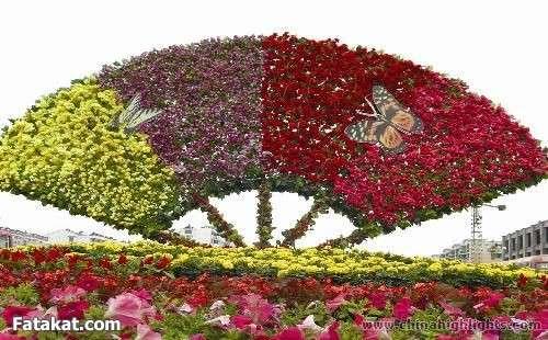 مهرجان الزهور روووعة 13220473437271