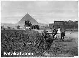جمال الريف المصري 13830961636349