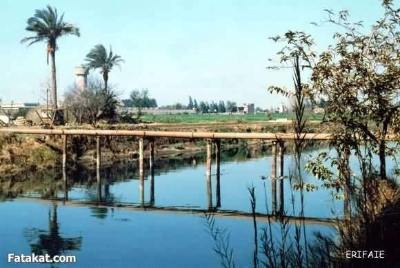 جمال الريف المصري 13830966109720