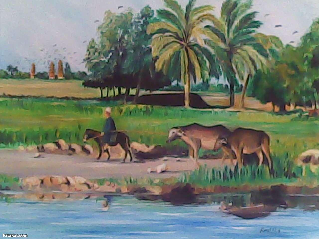 جمال الريف المصري 13830971118944