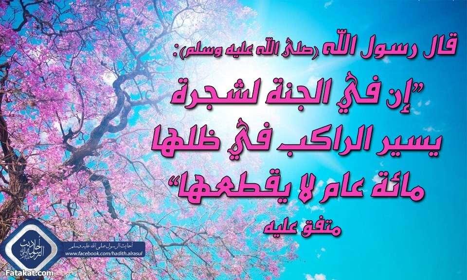 قصص رواها النبي صلى الله عليه وسلم (9) 13704430848386
