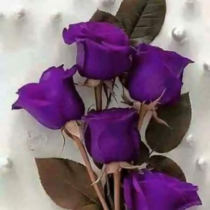 purple nail polish 1492170081_6834