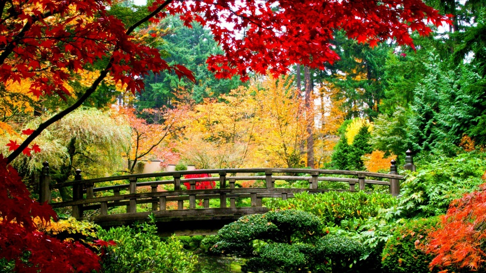Красотища.)) 2523010-R3L8T8D-1000-water_nature_trees_autumn_multicolor_flowers_China_leaves_bridges_plants_rivers_branches_2560x1440