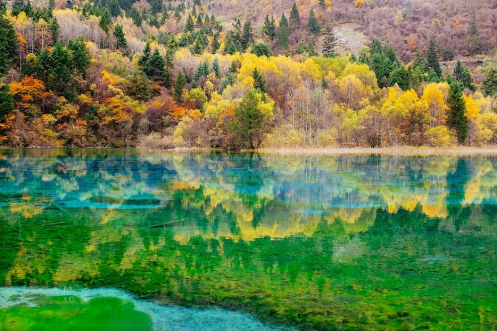 Одмори -Патувања - Page 7 18171060-R3L8T8D-1000-Five-Flower-Lake-Sichuan-China-940x626