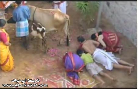 عبادة الفئران والابقار وشرب الاطفال مع الفئران عند الهندوس Item--Y2xwvFJo9