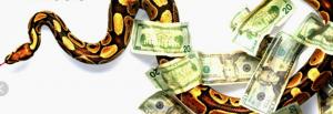 Питер Мейер. Подборка статей Versions-of-Money-300x103