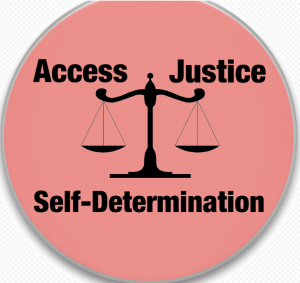 """Питер Мейер - Движение """"Жёлтых жилетов"""" 27 февраля 2017 года Self-determination-300x283"""