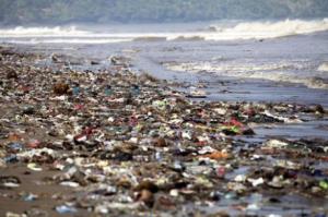 Питер Мейер - Глобальная опасность от микропластиков 9/07/2019 Ocea-pl-polution-300x199