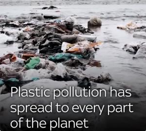 Питер Мейер - Глобальная опасность от микропластиков 9/07/2019 Plastic-ocean-pollution-300x270