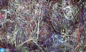 Питер Мейер - Глобальная опасность от микропластиков 9/07/2019 Clothing-microfibers-magnified-300x181