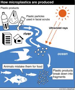 Питер Мейер - Глобальная опасность от микропластиков 9/07/2019 How-microplastics-are-produced-253x300