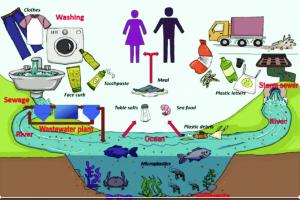 Питер Мейер - Глобальная опасность от микропластиков 9/07/2019 Microplastics-from-household-wastewater-300x200
