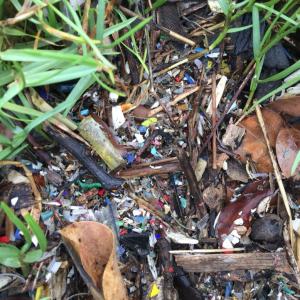 Питер Мейер - Глобальная опасность от микропластиков 9/07/2019 Plastic-particles-on-the-way-to-ocean.png--300x300