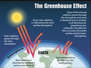 Питер Мейер -Климатический обман 16 октября 2019 года Greenhouse-is-Swindle-300x227