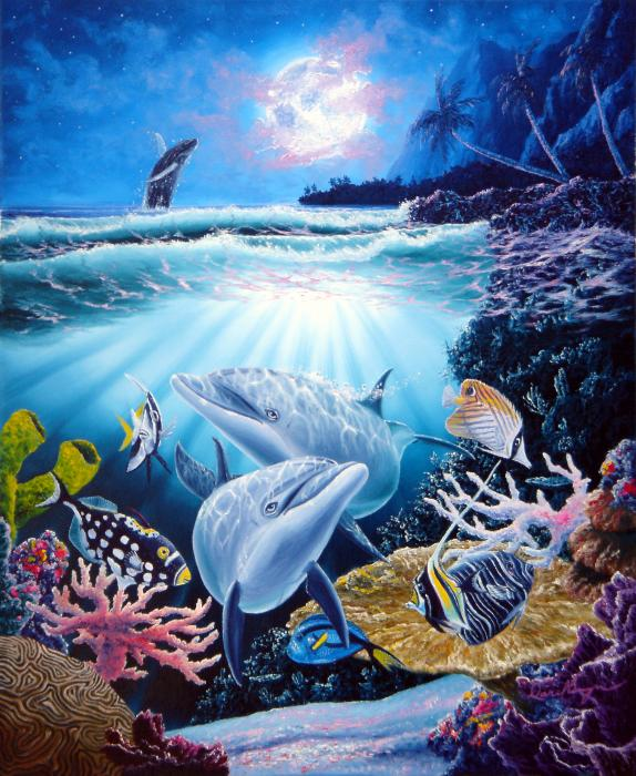 IMAGES TO NOURISH THE SPIRIT AND TOUCH THE HEART 1-dolphin-dream-daniel-bergren