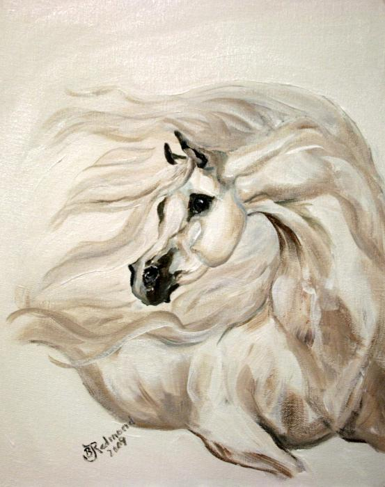 Конотърсач Allure-white-arabian-horse-bj-redmond