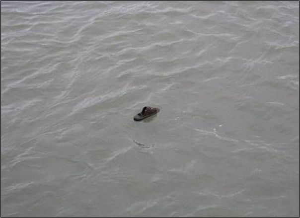 Усама бен Ладен убит в Исламабаде. - Страница 6 1305153827_Clipboard02