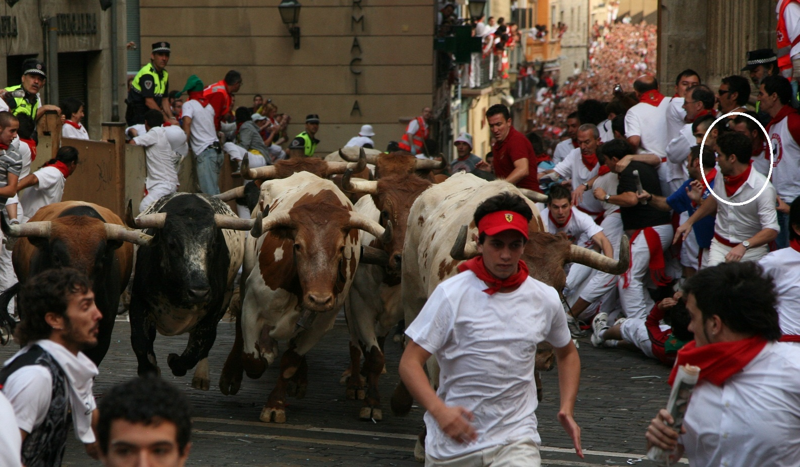 Šokantni običaji u svijetu Afh-corriendo-los-toros-de-miura-anc3b3n