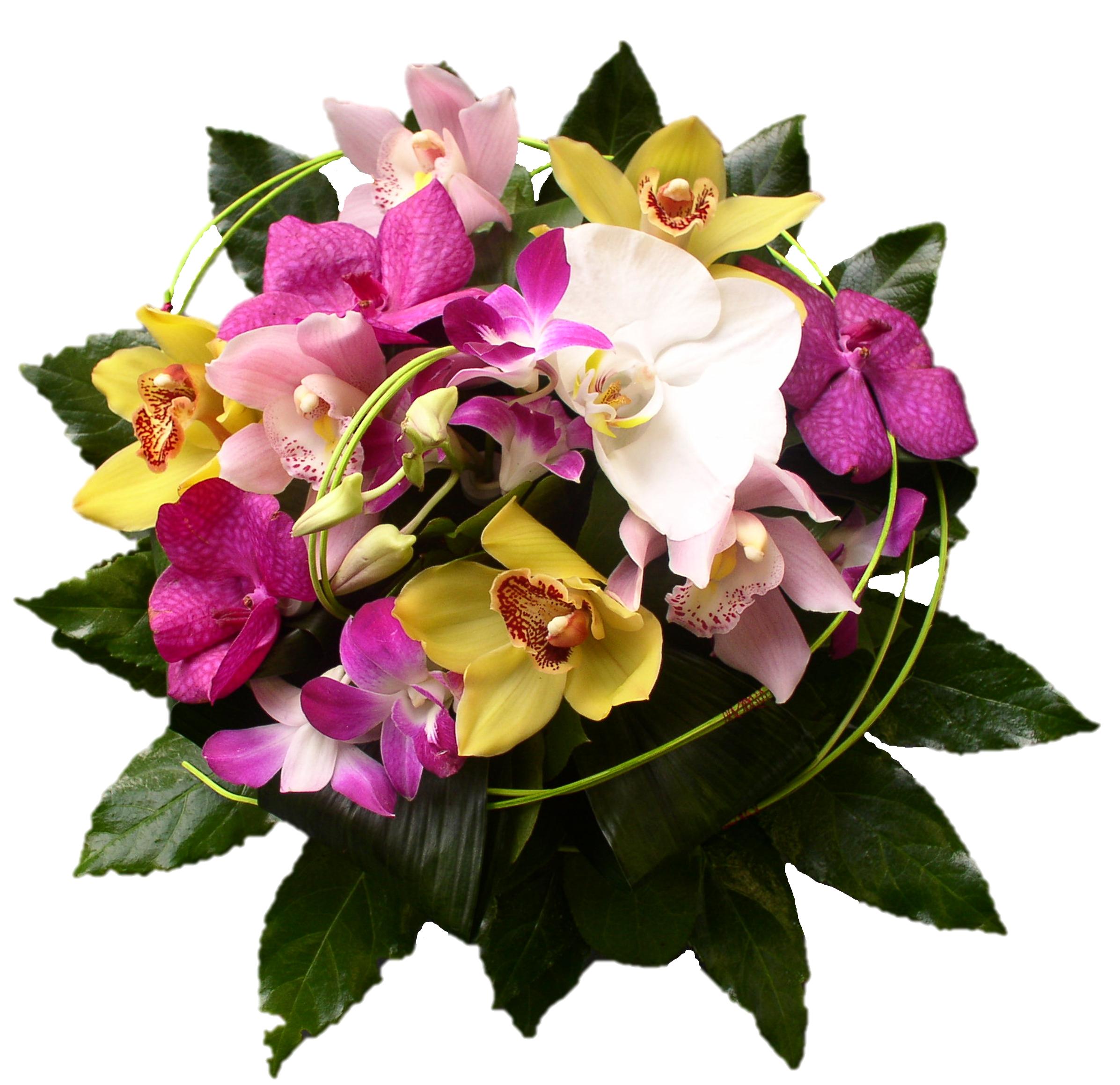 Lundi 19 juin 2017 Bouquet-manille-livraison-fleurs-exotique-orchidee-phalenopsis-vanda-cymbidium-dindrobium-bouguenais