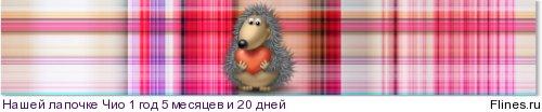 Прививки - Страница 5 1185327