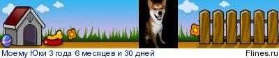 Подготовка дома к щенку - Страница 6 1435630
