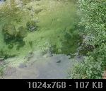 Subota 3.10.2009 3159C7F8-A912-0C48-90DB-46531C7682F1_thumb