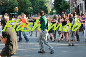 Elections européennes EELV : Flash mob Flashmob94120-300x200