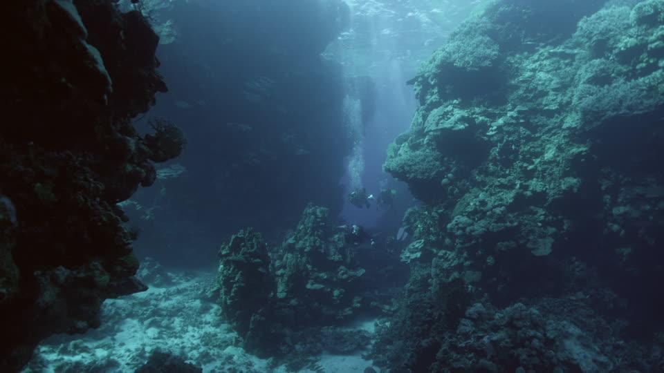 Treinamento Lupino - Página 11 983267003-torch-illumination-deep-sea-diving-diving-equipment-diving-suit