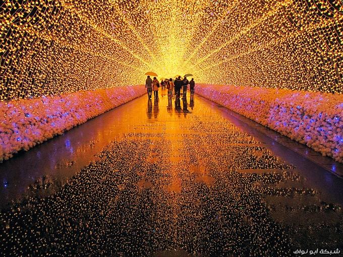صور من اليابان الرائعة Travel_photo_images_1358041159_981