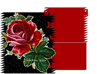 عصير الفجل لحرق شحوم الجسم Hwaml.com_1340090365_210