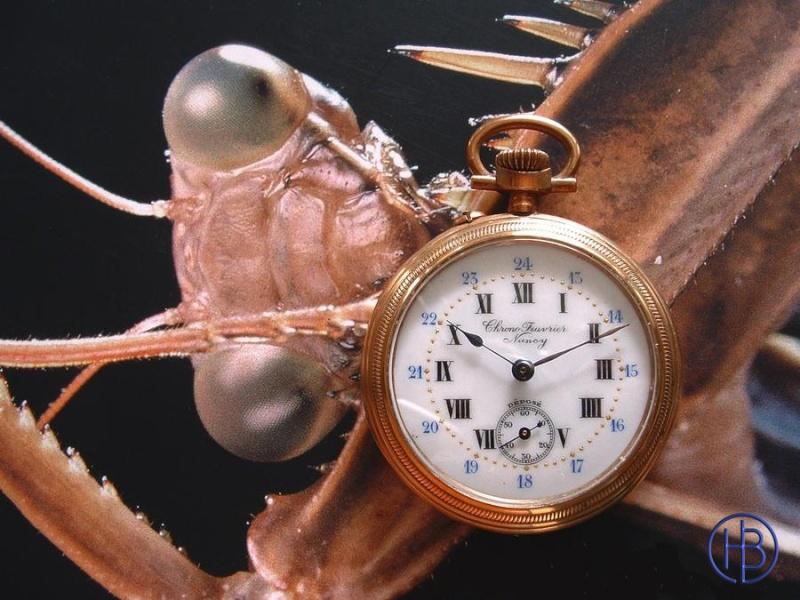 Association ouvrière d'horlogerie -Cheuvrier- Feuvri10_800x600