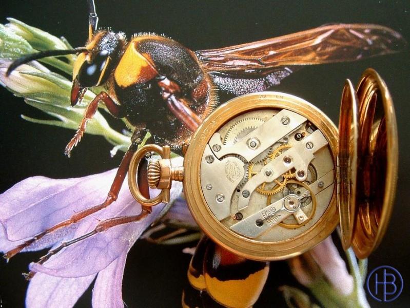 Association ouvrière d'horlogerie -Cheuvrier- Feuvri12_800x600