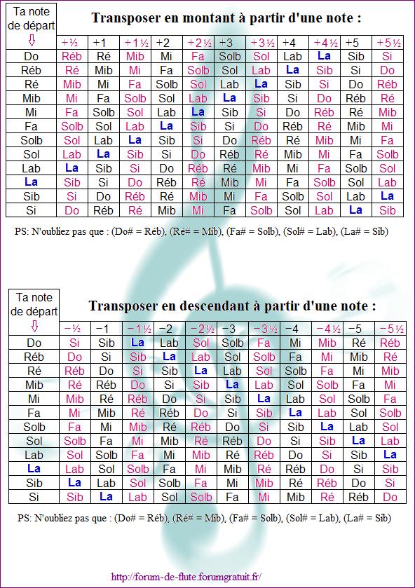 TRANSPOSER Transposer5