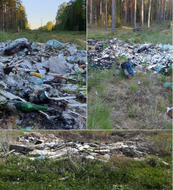 Шмелев договорился с криминалом о вывозе токсичных отходов МПБО-2 под Лугу 345338