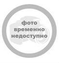 Александр Невский. Выборы 2013 137891707574152318