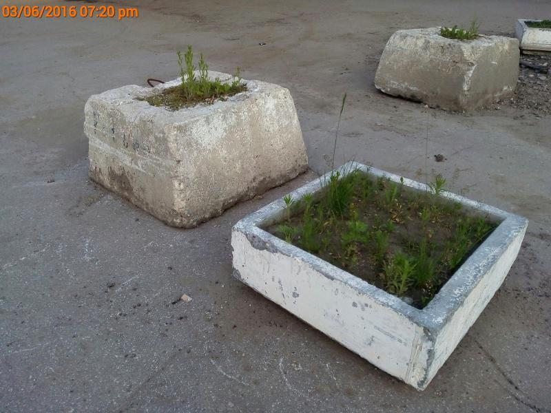 Прогулки по Скопину или хождение по мукам?  146505191925481195