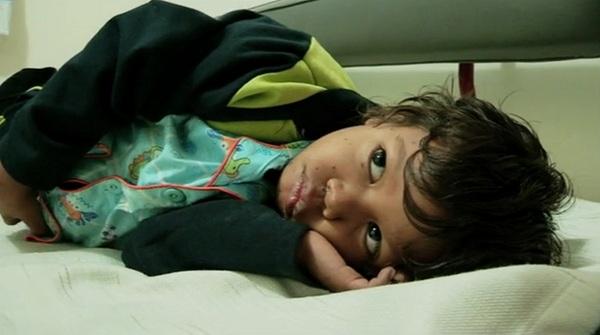 الطفل السلحفاة يتخلى عن لقبه    09edbcf337524ca71808ab0b67f17cb6